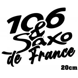 106 & Saxo de France 20cm