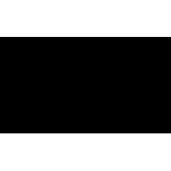 2x Logo Audi noir